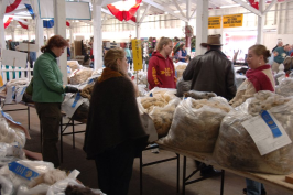 Fleece buyers trying to decide.